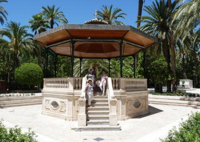 Пальмовый сад в Эльче, Испания