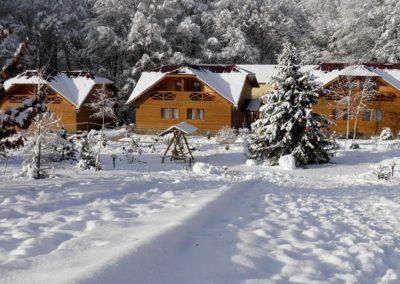 Вид на коттеджи в горах Закарпатья
