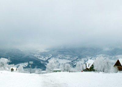 Окрестности села Шаян в горах Закарпатья