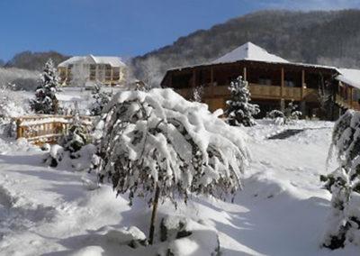 Ресторан. Отдых в коттеджах в горах Закарпатья